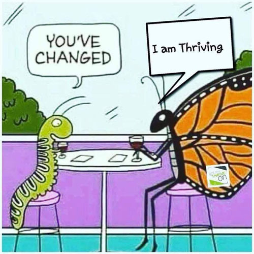 Thrive Challange